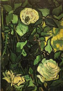 Vincent Van Gogh - Rose e Beetle