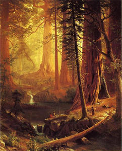 Albert Bierstadt - gigante sequoia  alberi  di  in California