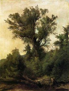 Asher Brown Durand - Flusso Woodland