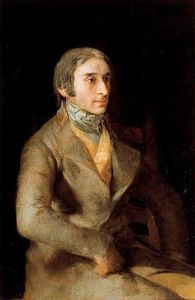 Francisco De Goya - Don Manuel Silvela