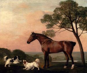 George Stubbs - un bay hunter con due spaniel