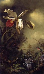 Martin Johnson Heade - White Orchid e Hummingbird