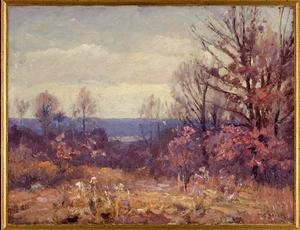 Theodore Clement Steele - Novembre Skies