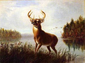 Arthur Fitzwilliam Tait - Eight Point Stag