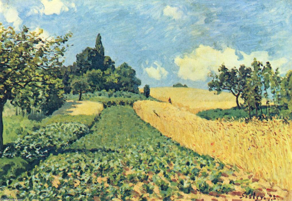 Grain fields on the hills of Argenteuil, 1873 di Alfred Sisley (1839-1899, France) | WahooArt.com