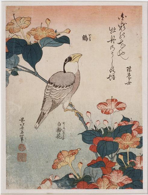 Big beak and mirabilis, 1834 di Katsushika Hokusai (1760-1849, Japan)