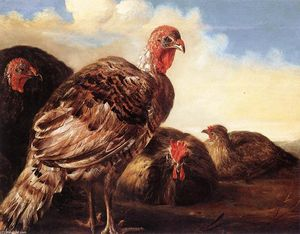 Aelbert Jacobsz Cuyp - Domestic Fowl
