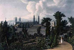 William Westall - il botanico Giardini , Cambridge