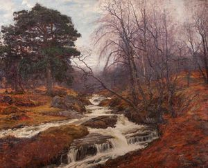 Alexander Brownlie Docharty - Caledonian Bosco