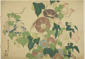 Katsushika Hokusai - morning glories E il Tree-frog