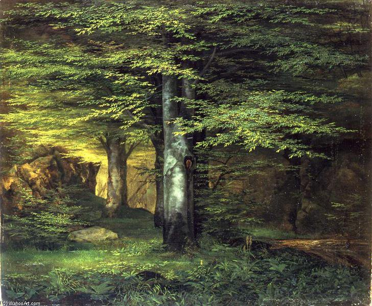 Waldinneres di Ernst Ferdinand Oehme (1797-1855, Germany)