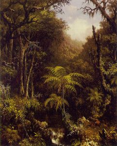 Martin Johnson Heade - Foresta brasiliano