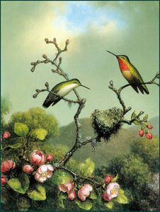 Martin Johnson Heade - rubythroat di nord L-america