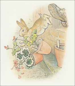 Beatrix Potter - Peter 20a rabbit - (11x12)