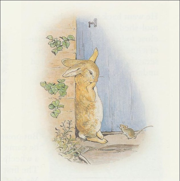 Peter 23a rabbit - (11x11) di Beatrix Potter (1866-1943)