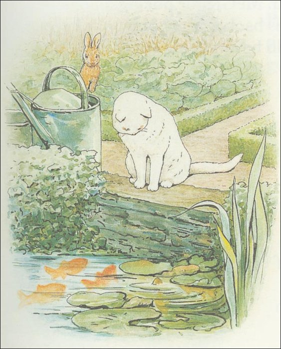Peter 24a rabbit - (11x13) di Beatrix Potter (1866-1943)