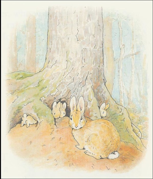 Peter Rabbit 3a - (11x12) di Beatrix Potter (1866-1943)