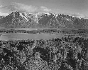 Ansel Adams - Untitled (813)