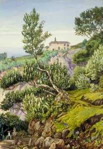 Marianne North - old manor di Castro , Teneriffe