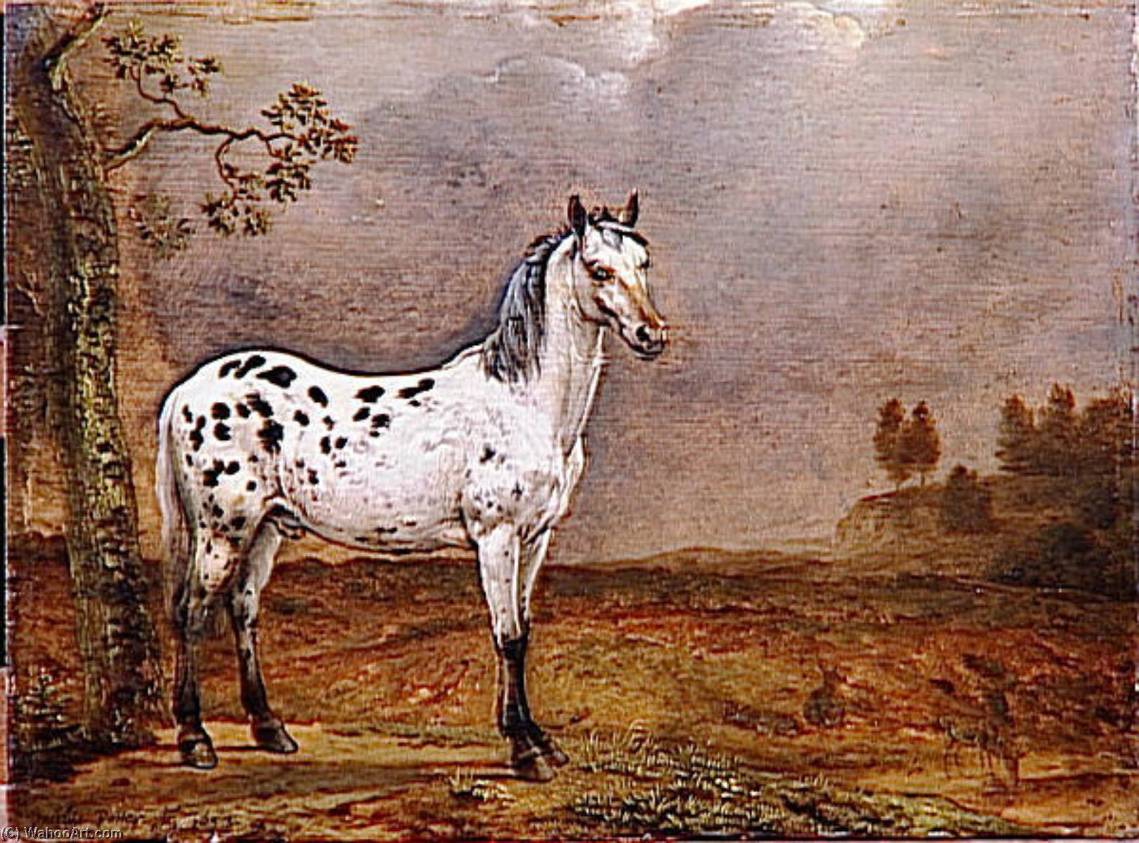 LE CHEVAL TORTA, olio di Paulus Potter (1625-1654, Netherlands)